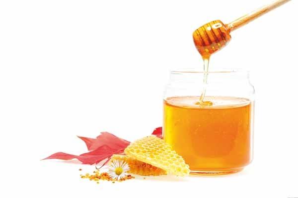 تولید عسل؛ شیرین و درآمدزا