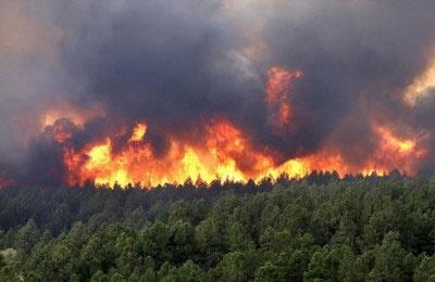 ۱۸ هزار هکتار جنگل سال گذشته در آتش سوخت