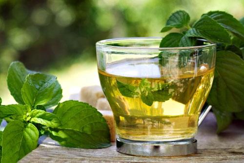 تقویت حافظه با چای نعنا و رزماری