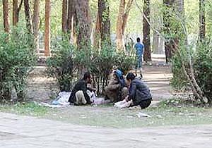 وجود ۱۲ هزار معتاد رها شده در تهران