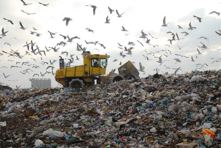 بالغ بر ۸۵ درصد زبالههای شهری قابل بازیافت است