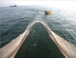 معدومسازی پنج تن پودر ماهی در بندر ماهشهر