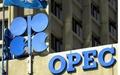 رشد ۶ دلاری قیمت سبد نفتی اوپک