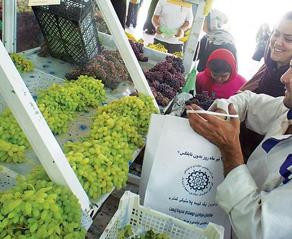 ضیافت رمضان با تخفیفات ویژه در میادین و بازارهای میوه و ترهبار