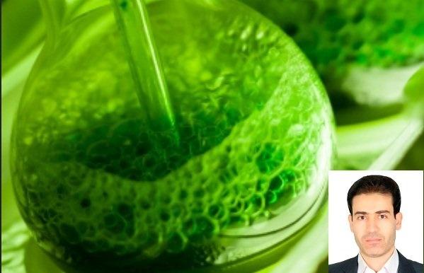 اعطای جایزه جهانی دانشمند برجسته در شیمی سبز به محقق ایرانی