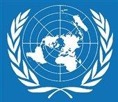 سازمان ملل سلب تابعیت از رهبر شیعیان بحرین را عملی ناموجه خواند