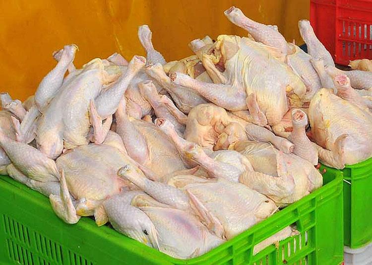 مرغ بازهم گران شد | ۷۹۰۰ تومان