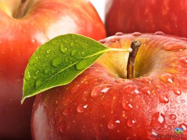 سالمترین گزینههای غذایی برای کاهش کلسترول