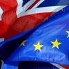 انگلیسیها به خروج از اتحادیه اروپا رای دادند