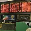 زیان سهامداران در بهار؛ ۸ درصد