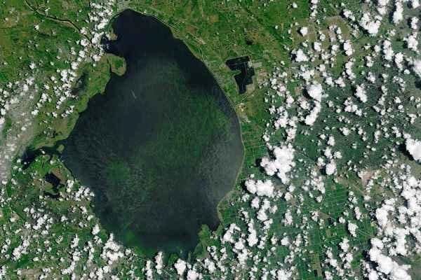 تماشای حمله جلبکهای سمی به فلوریدا از فضا