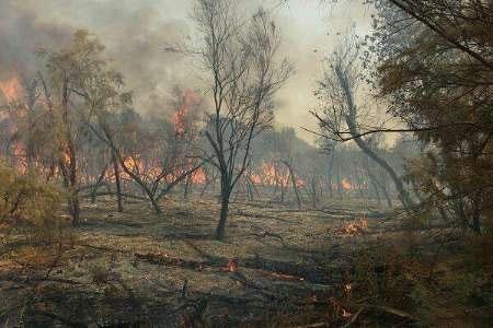 ۶۲ هکتار از پارک ملی کرخه در آتش سوخت