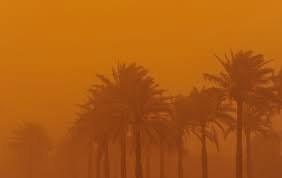 تدوین سند ملی منشاء گرد و غبار در ۱۶ استان کشور