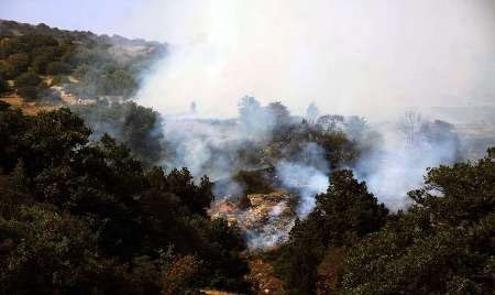 کاهش ۶۰ درصدی آتشسوزی در جنگلهای تحت حفاظت سازمان محیط زیست