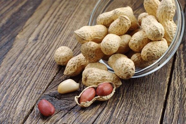 مصرف بادام زمینی سلامت قلب را تضمین میکند