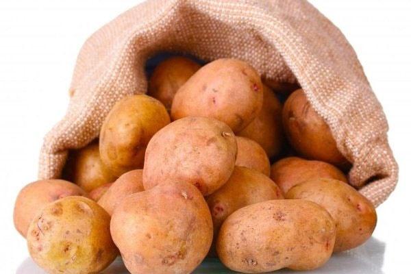 افزایش برداشت سیبزمینی با استفاده از نانوذرات آهن