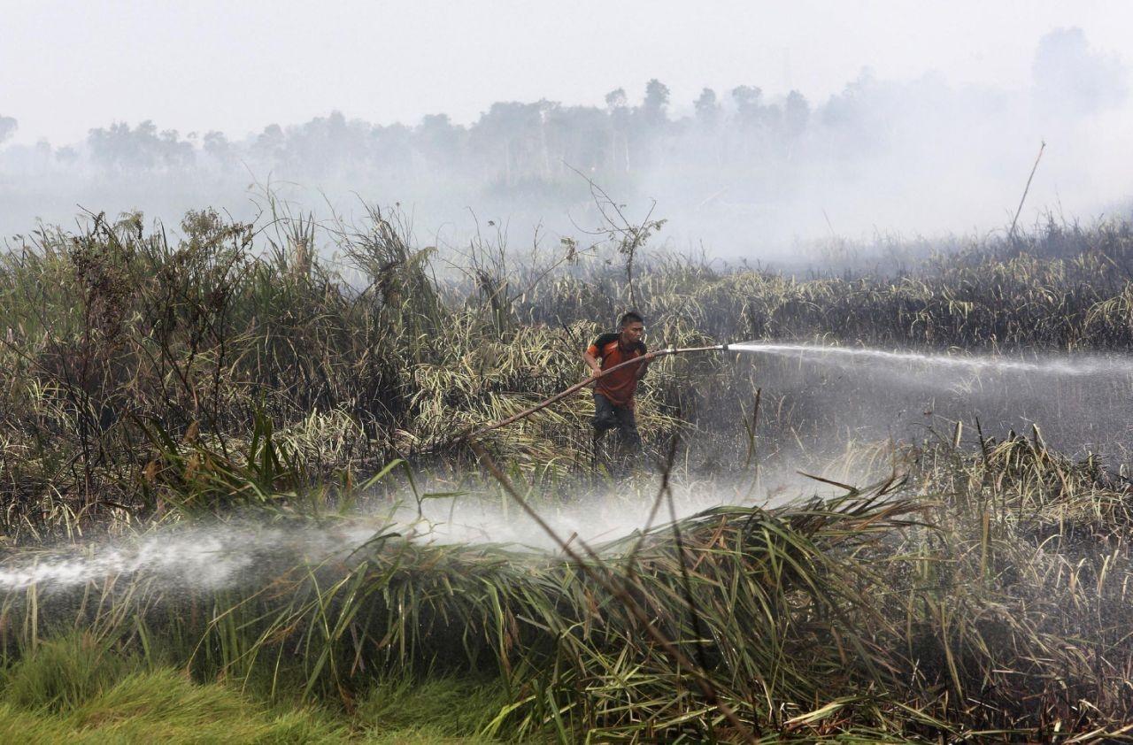 تخمین مرگ ۱۰۰ هزار نفر به علت مهدود سال پیش در اندونزی