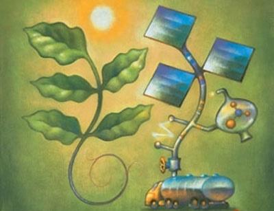 فتوسنتز مصنوعی، یک گام تا مرحله تجاری