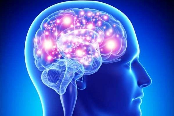 مغز افراد باهوش نیاز به جریان خون بیشتری دارد