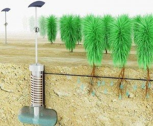 اجرای سیستم نمکزدایی و آبیاری همزمان در کشاورزی