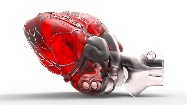 کشت لایه خارجی قلب انسان با کمک سلولهای بنیادی
