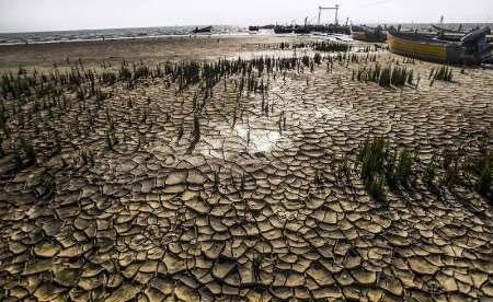 خشک شدن بیش از ۱۰ درصد از تالاب میانکاله