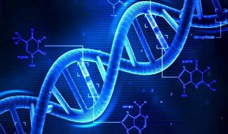 ارائه نسل جدیدی از توالییابیهای DNA از سوی محققان کشور