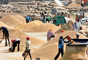 هند بهدنبال افزایش صادرات برنج به ایران
