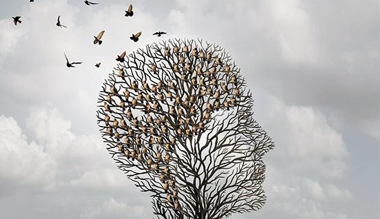 زندگی در مناطق پررفت و آمد خطر زوال عقلی را افزایش میدهد