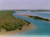 مجمع خیرین آبخیزداری هرمزگان، الگویی برای ورود خیرین سایر استانها به حوزه منابع طبیعی