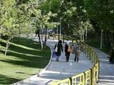 دختران تهران پاتوقدار میشوند