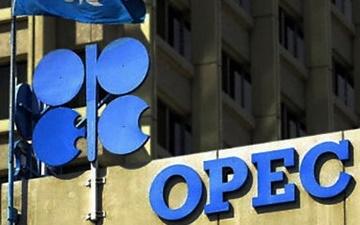 اوپک و روسیه روند پیشرفت کاهش نفت را بررسی میکنند