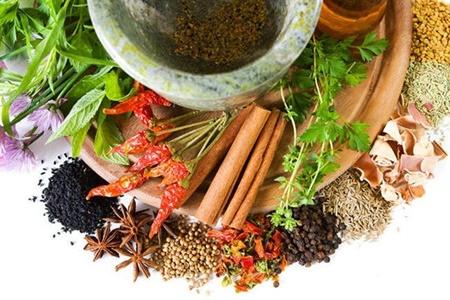 طب سنتی جان دوباره میگیرد؟