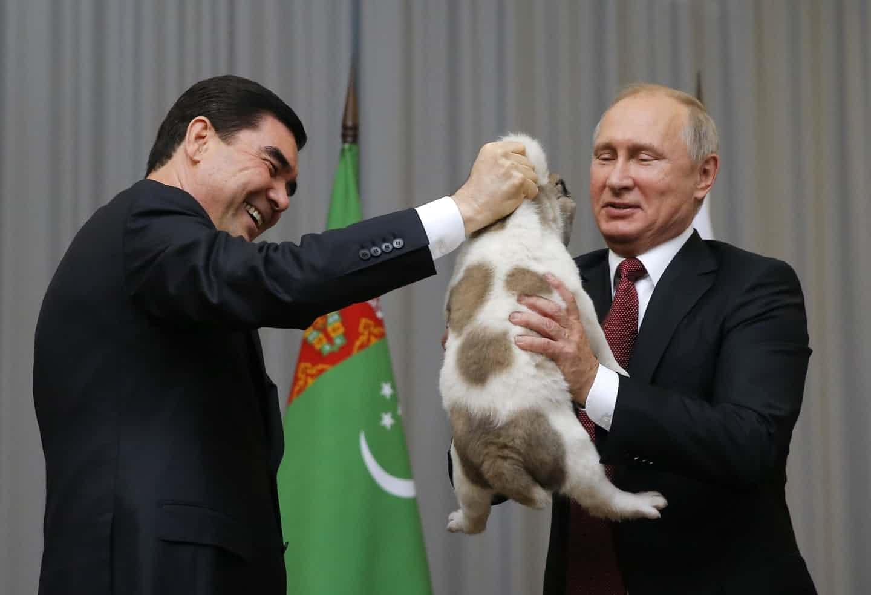 عکس روز: هدیهای برای پوتین