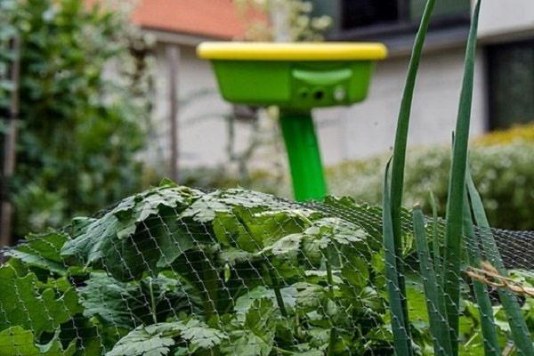 روبات باغبان با قابلیت مقابله با آفات و آبیاری گیاهان از راه رسید