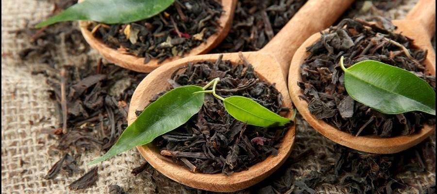۵ مورد از خواص چای که از آن مطلع نیستید