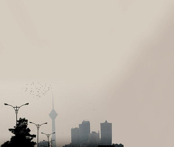 آلودگی هوا -تهران-پرندگان