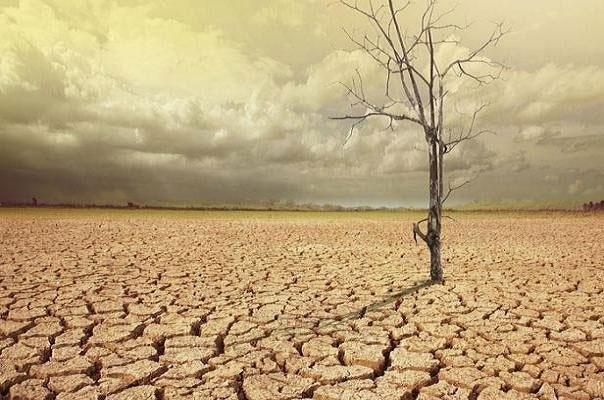 گرم شدن خاک روند افزایش دمای کره زمین را سرعت میدهد