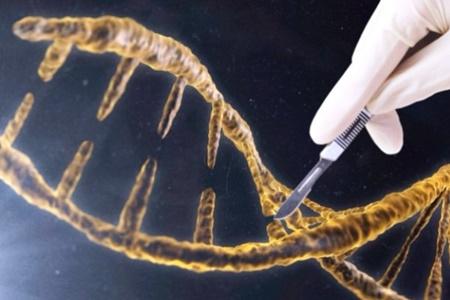 شناسایی ۷۶ ژن جدید مقاوم به آنتی بیوتیک