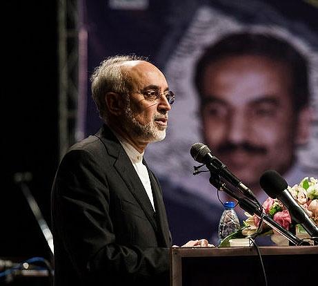 علی اکبر صالحی: برجام به هم بخورد آنها را حیرتزده میکنیم