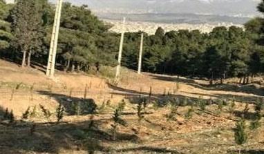 جانمایی و احداث نیروگاه خورشیدی ۱۵۰ کیلو واتی در سرخه حصار