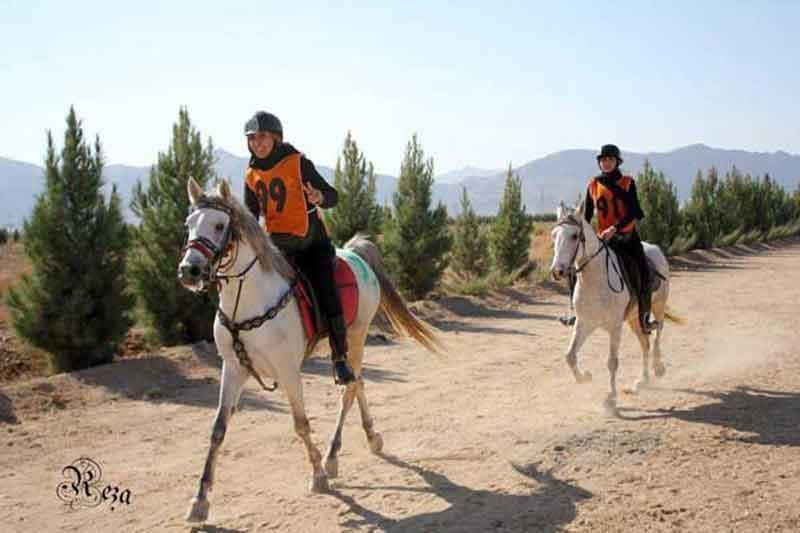 پایان مسابقه سواری استقامت فدراسیون جهانی سوارکاری در ایران