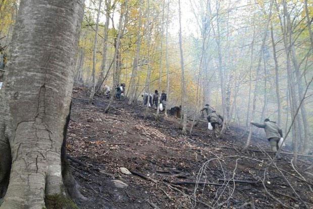 افزایش دما و احتمال حریق در جنگلهای گلستان | آماده باش نیروهای منابع طبیعی