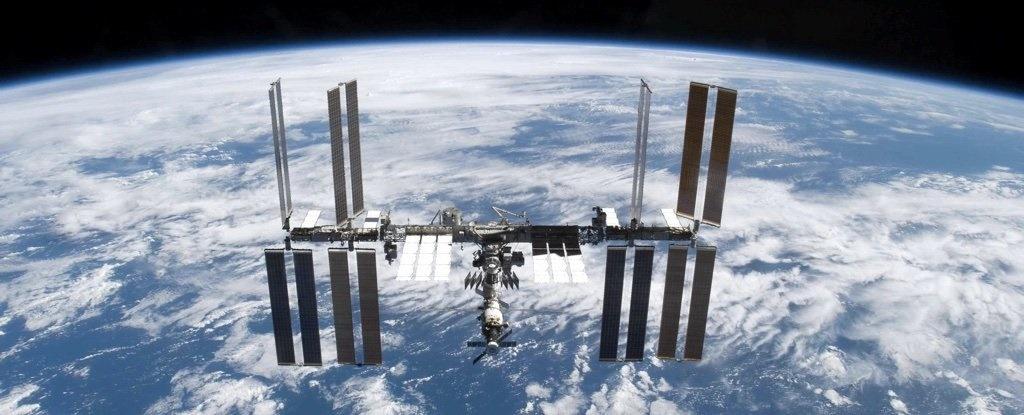 کشف باکتری زنده در بدنه خارجی ایستگاه فضایی