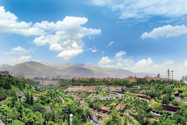 گیاهان فراموششده تهران