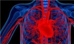 کمخونی,اختلالات تیروئید,پزشکی,قلبی,تپش قلب,بیماری