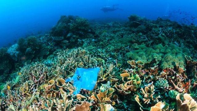 خداحافظی با زبالههای پلاستیکی با توافق ۲۰۰ کشور