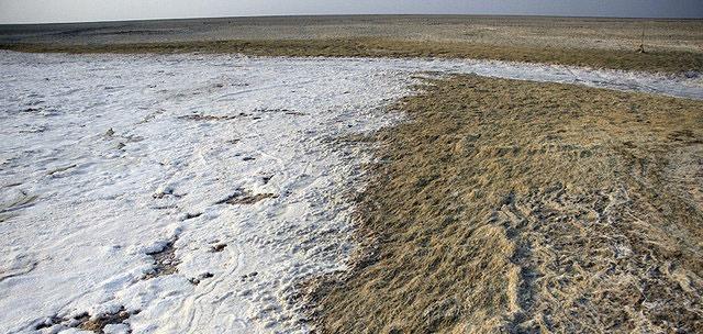 """قسمت جنوبی تالاب """"شادگان"""" خشک شده است"""