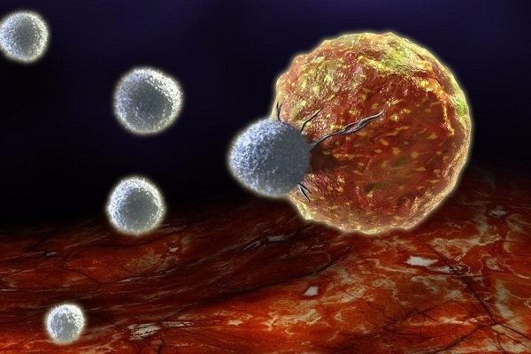 شناسایی پروتئین قاتل تومورهای سرطانی