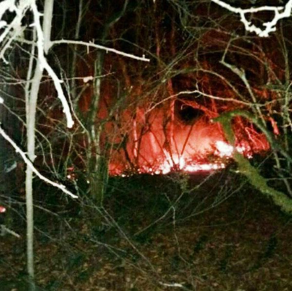 آتش به جان ۵ هزار هکتار از مراتع و جنگلهای سوادکوه